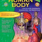 Human Body, Grades 2   3 Skills for Success   Multi