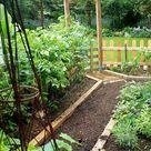 My Herb and Veggie Garden