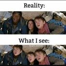 Newtmas Pictures & Memes - Reality?