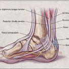 Diagnosing Heel Pain in Adults