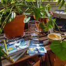 Die erste Buchvorstellung, Travel Hacks und eine kulinarische Herausforderung - Last Paradise