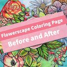 Relax: Coloring Book Before And Afters