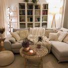 Reddit - PeepingPooch - The ultimate cozy living room