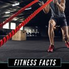 Fitness Fact Of The Day