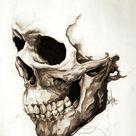 Skull by ReverendHashbrownz on DeviantArt