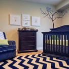 Chevron Area Rugs