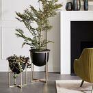 Tonal Chic Decor | Interior Decorating Ideas | Buyer Select