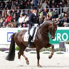Germany Wins Aachen Dressage Nations Cup, Denmark 2nd, USA 3rd