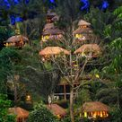 Hotels In Ubud