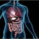High-dose Fluticasone Effective Against Eosinophilic Esophagitis, Says Study
