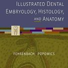 Illustrated Dental Embryology, Histology, and Anatomy by  Margaret J. Fehrenbach RDH  MS - Saunders