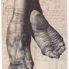 Füße Zeichnen, Mark Powell