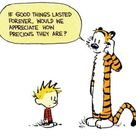 Best Calvin And Hobbes