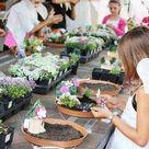 How to Make a Fairy Garden! - Design Dazzle