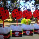 Ladybug Centerpieces