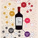 Different Types Of Wine
