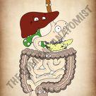 A4 PDF Complete Digestive System E-book