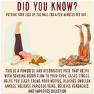 Legs up Wall   Restorative Pose and Supplements for Heart Health & Stress