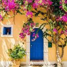 Beautiful Blue Door Flowers Tree Backdrops for Pictures G-671