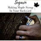 Sugarin: Making Maple Syrup In Your Backyard   Two Paws Farmhouse