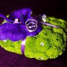 Purple Green Weddings