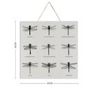 Dragonfly Meanings Wooden Art