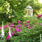 Edinburgh-based garden and lifestyle photographer