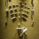 Framed Photo. Prehistory. Paleolithic. Lucy skeleton.