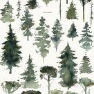 North Shore Vintage Watercolor Illustration Kit Landscapes Animals Birds Conifer Trees Evergreens Fir trees Winter Deer Wolf Bear Raven