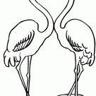 Einfach Herunterladen Flamingo Malvorlage  Wahres Archiv