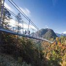 Framed Photo. Tourists on the suspension bridge called Highline