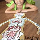 Human Body Project with Free Printables
