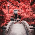 The most beautiful temples in Kyoto, the city of a thousand temples