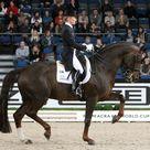 Helen Langehanenberg & Damon Hill Win Stuttgart World Cup Grand Prix with Post Personal Best Score