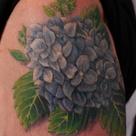 Hydrangea Tattoo