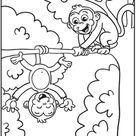 Silly Monkeys | Worksheet | Education.com