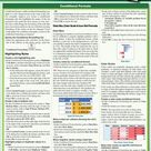 QuickStudy   Excel 2016 Advanced Laminated Reference Guide