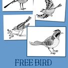 FREE Bird Coloring Pages and Resources