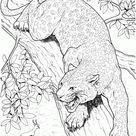 Jaguar Coloring Pages - Best Coloring Pages For Kids
