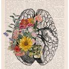 Springtime brain Nature Anatomy  Brain Flower  Anatomy | Etsy