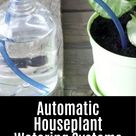 Make Your Own Automatic Plant Waterer DIY