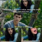 Funny Maze Runner and Newtmas Pictures - 1