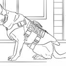 K-9 Police Dog coloring page   Free Printable Coloring Pages