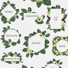 -50% NATURAL STUDY set ll: avocado by Lana Elanor on @creativemarket