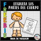 Etiqueta las partes del cuerpo   Label the body parts in Spanish