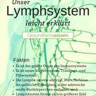 Diese Aufgaben erfüllt das Lymphsystem des Menschen