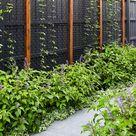 Brighton - Contemporary - Melbourne - by Garden Constructions   Houzz