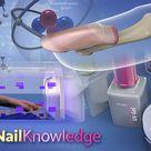 Nail Knowledge Diploma