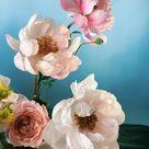 Meet the Florist Behind Instagram's Dreamiest Still Lifes - Sight Unseen