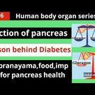 Function of pancreas/pancreas related diseases/yog PRANAYAMA for pancreas health/food imp tips
